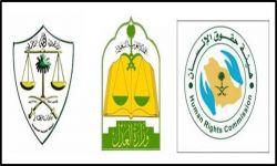 أنظمة السلطة القضائية وحقوق الإنسان